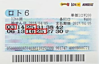 Japan Loto 6 Ticket