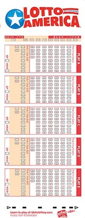 Lotto America Lottery Play Slip Ticket